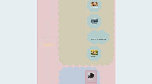 Mind Map: CLASIFICACIÓN DE LOS RECURSOS