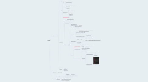 Mind Map: Test stage