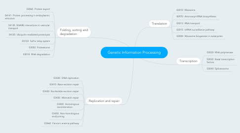 Mind Map: Genetic Information Processing