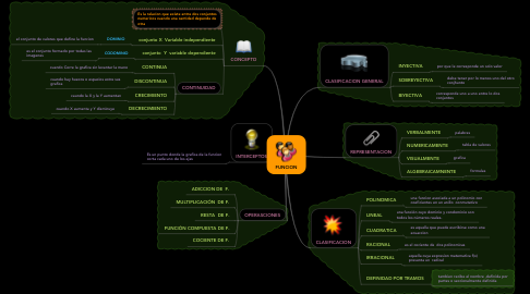 Mind Map: FUNCION
