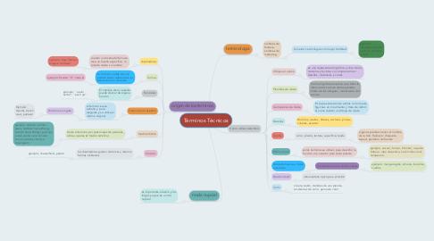 Mind Map: Términos Técnicos