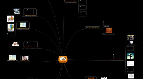 Mind Map: Derecho de petición