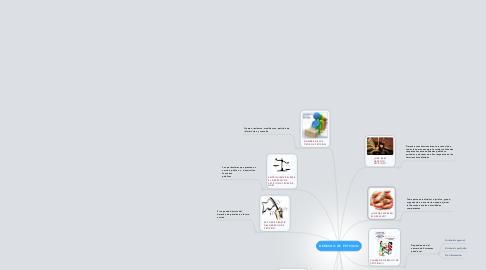 Mind Map: DERECHO DE PETICION
