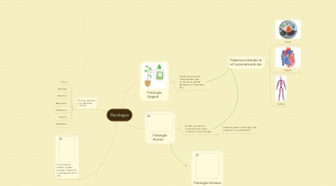 Mind Map: Fisiología