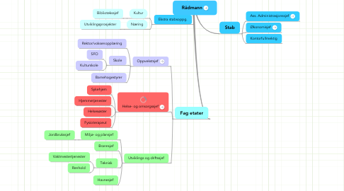 Mind Map: Rådmann