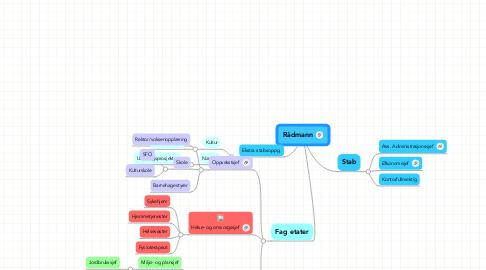 Mind Map: Rådmann
