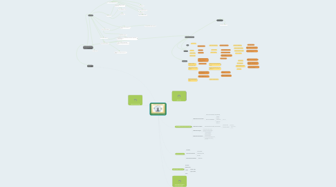 Mind Map: ALFABETIZACIONES MULTIPLES