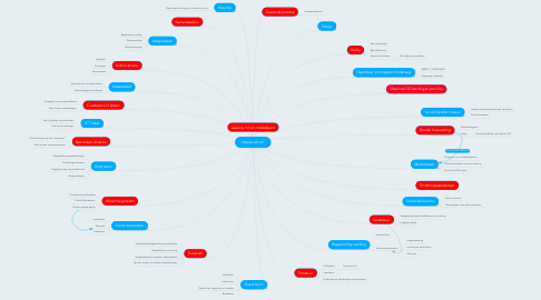 Mind Map: Ideale school