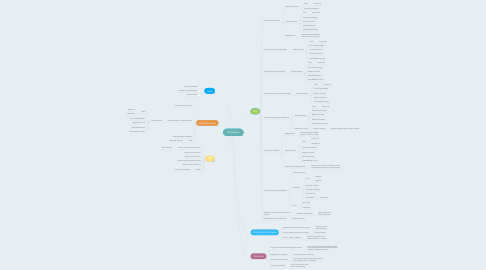 Mind Map: Omnibees