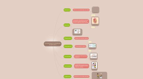 Mind Map: Caracteristicas funciomales de los seres vivos