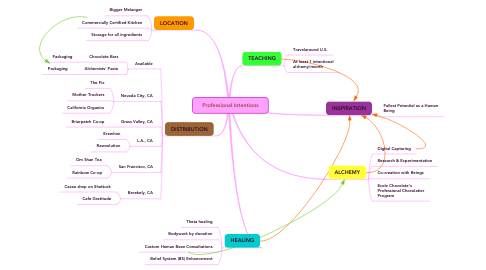 Mind Map: Professional Intentions