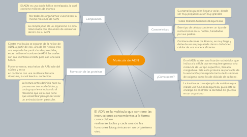 Mind Map: Molécula de ADN