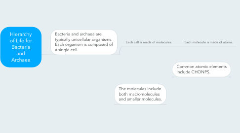 Mind Map: Hierarchy of Life for Bacteria and Archaea