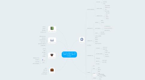"""Mind Map: Большой общественный проект ЛП-32 """"Крылья Сибири"""""""