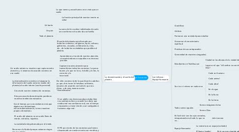 Mind Map: Los 4 acuerdos