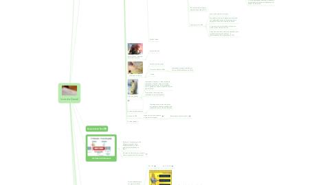 Mind Map: Livro de Daniel