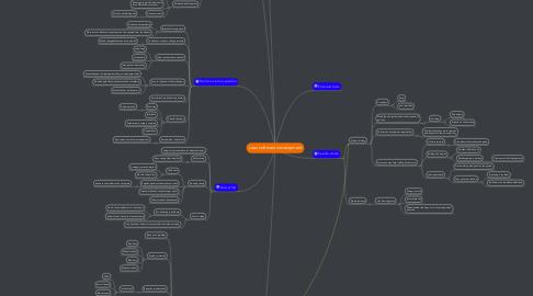 Mind Map: Lean software development