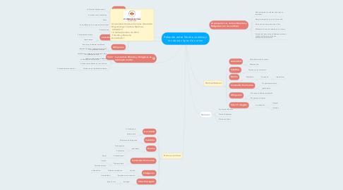 Mind Map: Relación entre Norma Jurídica y los demás tipos de norma