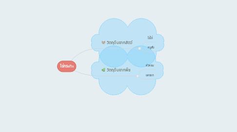 Mind Map: ไข่กระทะ