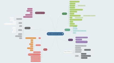 Mind Map: Maria Montessori Lyceum