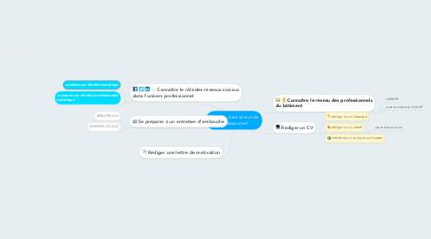Mind Map: S'insérer dans le monde professionnel