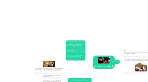 Mind Map: La Fase Intermedia