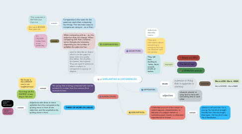 Mind Map: SIMILARITIES & DIFFERENCES.