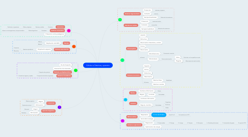 Mind Map: Células vs Sistemas y aparatos