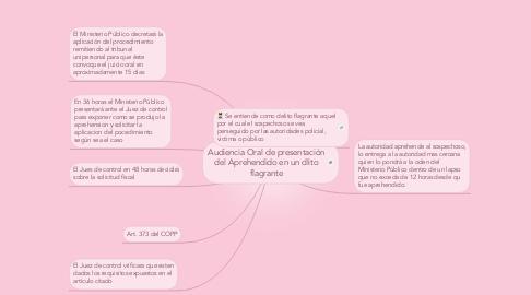 Mind Map: Audiencia Oral de presentación del Aprehendido en un dlito flagrante