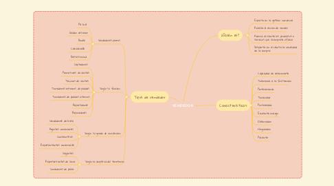 Mind Map: VENDEDOR