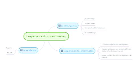 Mind Map: L'expérience du consommateur