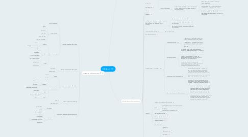 Mind Map: Інформатика