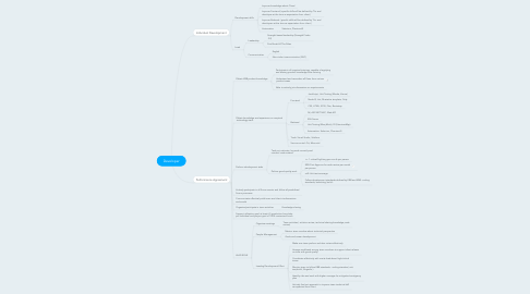 Mind Map: Developer
