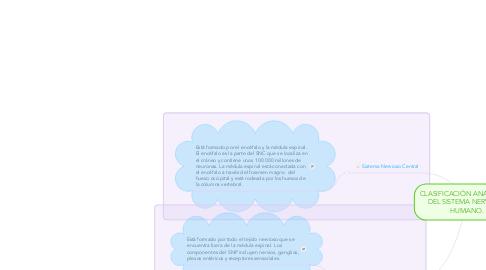 Mind Map: CLASIFICACIÓN ANATÓMICA DEL SISTEMA NERVIOSO HUMANO.