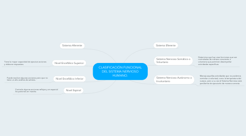 Mind Map: CLASIFICACIÓN FUNCIONAL DEL SISTEMA NERVIOSO HUMANO.
