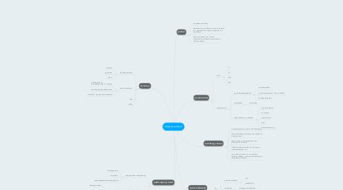 Mind Map: ideale school