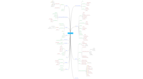 Mind Map: Fiesta Mundial