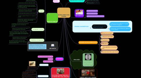 Mind Map: ANEMIA INFECCIOSA EQUINA
