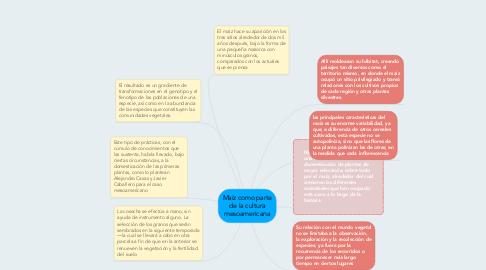 Mind Map: Maiz como parte de la cultura mesoamericana