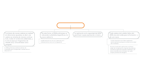 Mind Map: REPLICACION DEL ADN