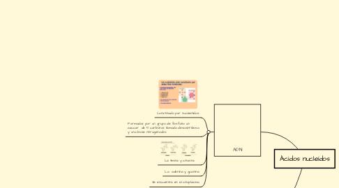 Mind Map: Ácidos nucleídos