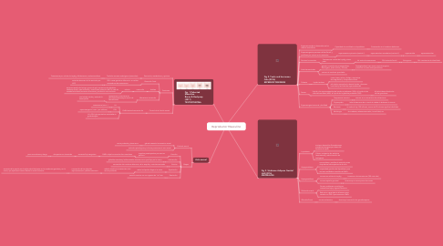 Mind Map: Reproductor Masculino