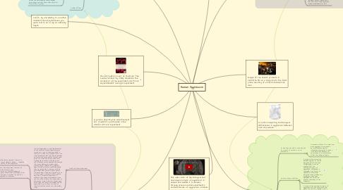 Mind Map: Human Aggression