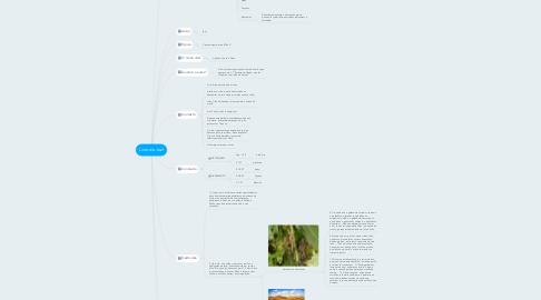 Mind Map: Livro de Joel