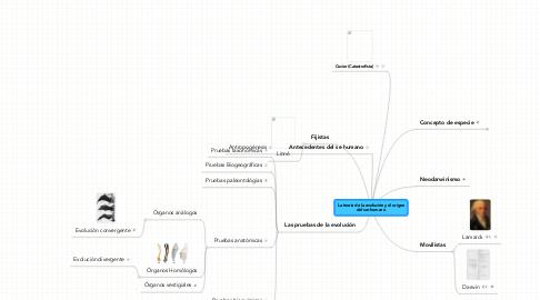 Mind Map: La teoria de la evolución y el origen del ser humano