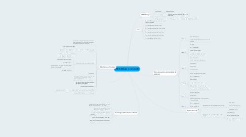 Mind Map: Metodologia e conclusão