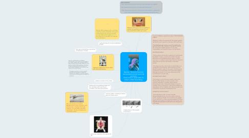 Mind Map: Reptiles. This kind of animals are ancestors of both mammals and birds. Science that is responsible for study is called herpetology.