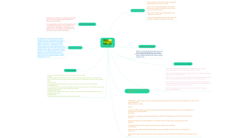 Mind Map: THE PLANTS