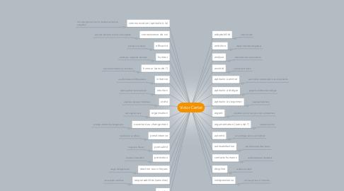 Mind Map: Victor Certat