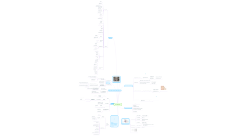 Mind Map: ESTRABISMO